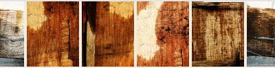 woodtexture14