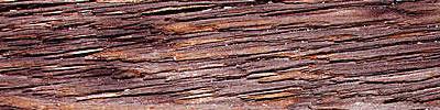 woodtexture20