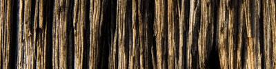woodtexture23