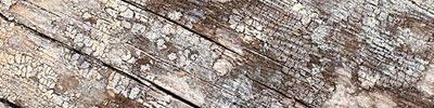 woodtexture4